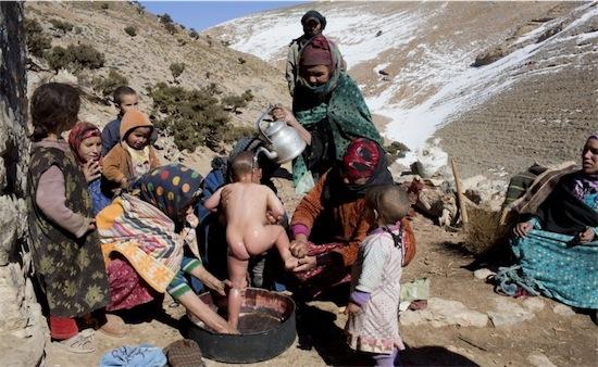 berberi reuter